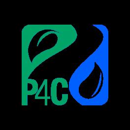 P4C - Solid color